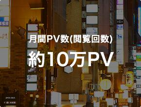 月間PV数(閲覧回数)